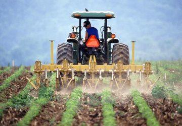 soil-386749_640-360x250.jpg